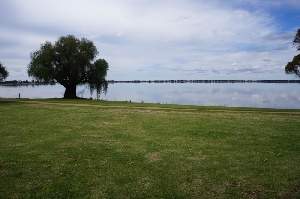 Lake Boga on the Murray