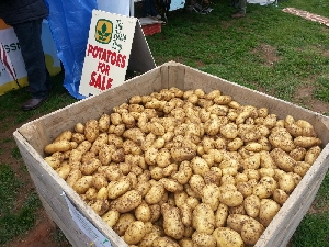 Celebrating over 150 years of growing potatoes high on the Southern Tableland of NSW.